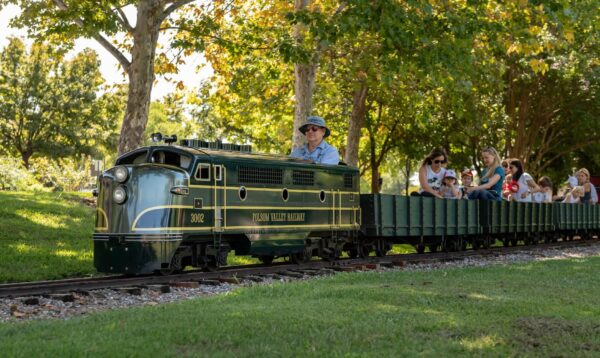 Swanee River Railroad - Miniature Train
